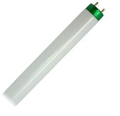 tube-light